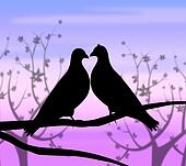 Love Birds Represents Compassion Passion And Heart