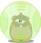 Hamster in ball