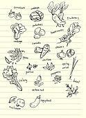 vegetable hand doodle illustration
