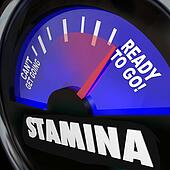 Stamina Fuel Gauge Drive Power Energy Increase