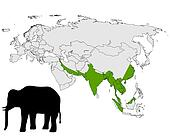 Asian elephant range