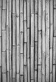 close-up of bamboo fence, black and white