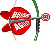 Business Agility Bow Arrow Aiming Target Goal