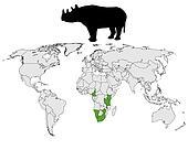 Rhinoceros range
