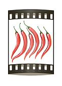 Hot chilli pepper set isolated on white background. The film strip