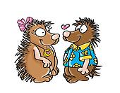 porcupines in love,