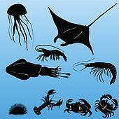 Various sea creatures vector