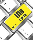 life cycle on laptop keyboard key