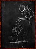Watering Plant sketch on blackboard