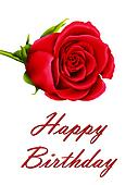 Birthday card with single red rose