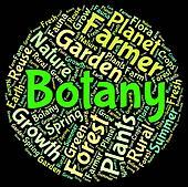 Botany Word Indicates Plant Life And Botanical