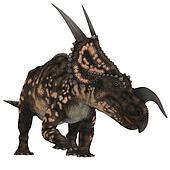 Einiosaurus on White