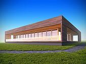Ecological modern wood house.