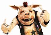 punk pig