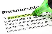 'Partnership' highlighted in green