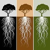 Vertical Tree Root Banner Set