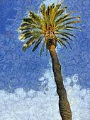 Palm Tree & Sky Painting