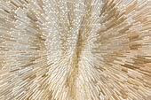 Cream yarn texture, 3d block style