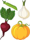 Set of vegetables4
