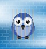 jailbird