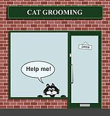 cat grooming establishment
