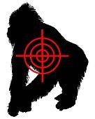 Gorilla crosslines