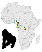 Africa Gorilla range