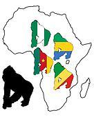 Africa Gorilla