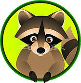 Raccoon Cartoon