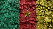 Cameroon Flag rough texture