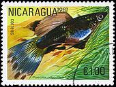 NICARAGUA - CIRCA 1981 Guppy