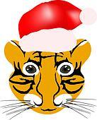 tiger baby head