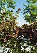 The Wild Rose Garden