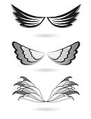 Set of angel wings