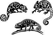 Chameleons set