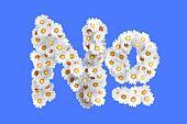 Camomile flower symbol