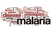 Malaria word cloud