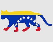 Cougar Venezuela