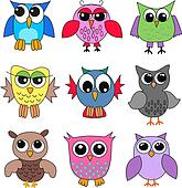different owls