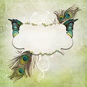Vintage background with feathers