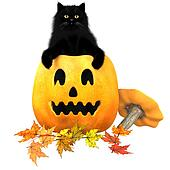 Black Cat Halloween Autumn Leaves