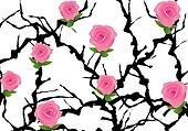 vector blackthorn bush with roses