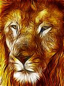 Close-up picture illustration of Large Lion face