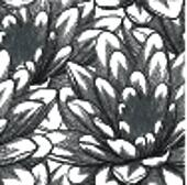 black and white seamless pattern with lotus flowers.