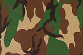 Camouflage pattern on cloth.