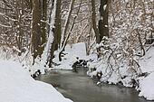 oil painting stylized photo of River in winter