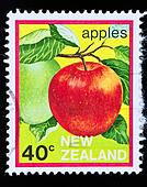 vintage postage stamp of an apple