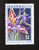 Australian postage stamp of lillies
