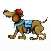 beautiful dachshund dog