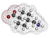 Tranexamic acid antifibrinolytic drug molecule. Prevents excessi